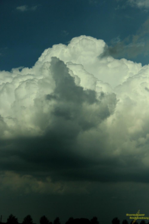 Cumulswolken
