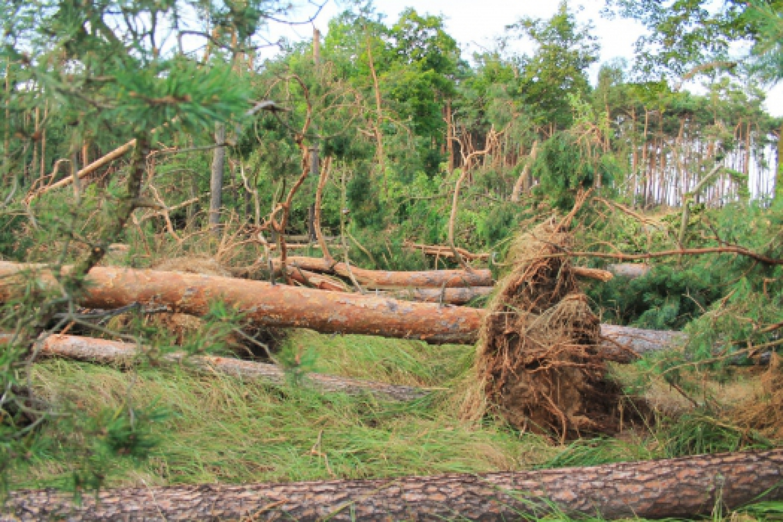 Tornadoverdacht am 03.08.2013
