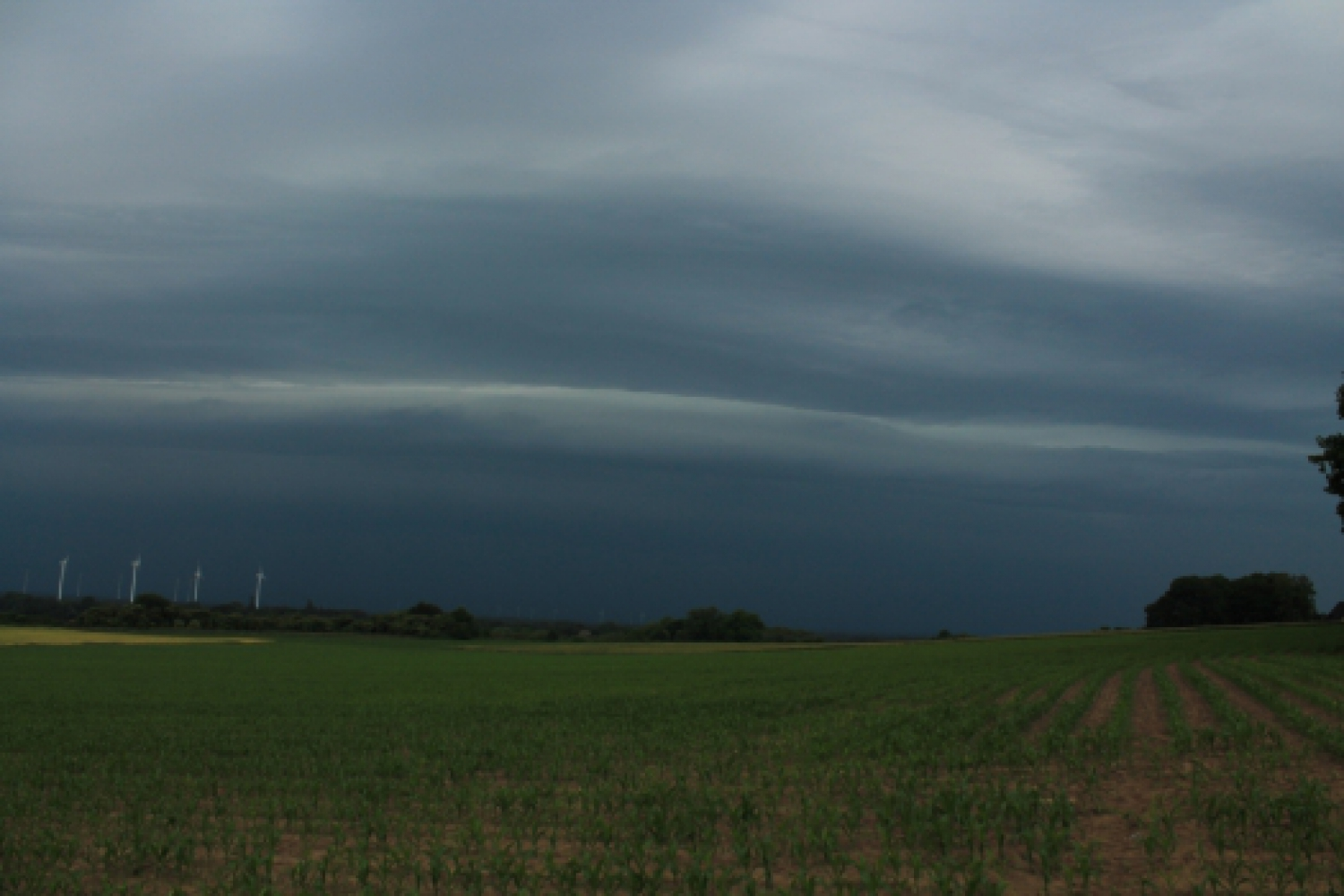 Shelfcloud am 08.06.2015