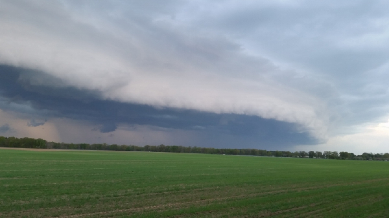 Shelfcloud am 05.05.2015