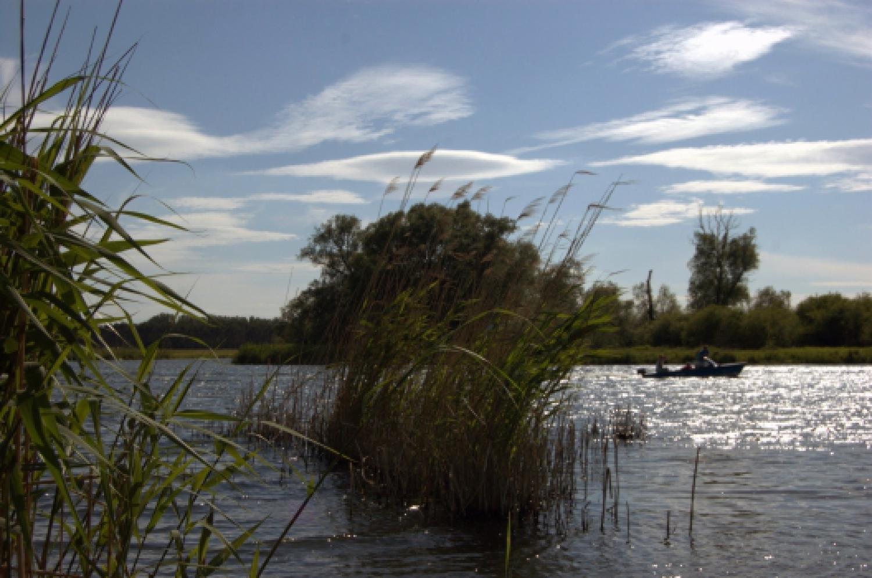 Sommer an der Havel
